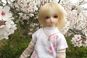 090329桜079.jpg