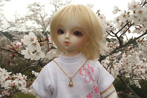 090329桜151.jpg
