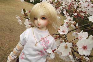 090329桜228.JPG