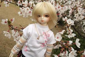 090329桜232.JPG