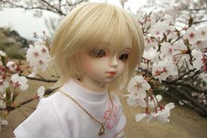 090329桜333.JPG