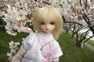 090329桜497.JPG